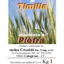Semola Integrale di Timilia